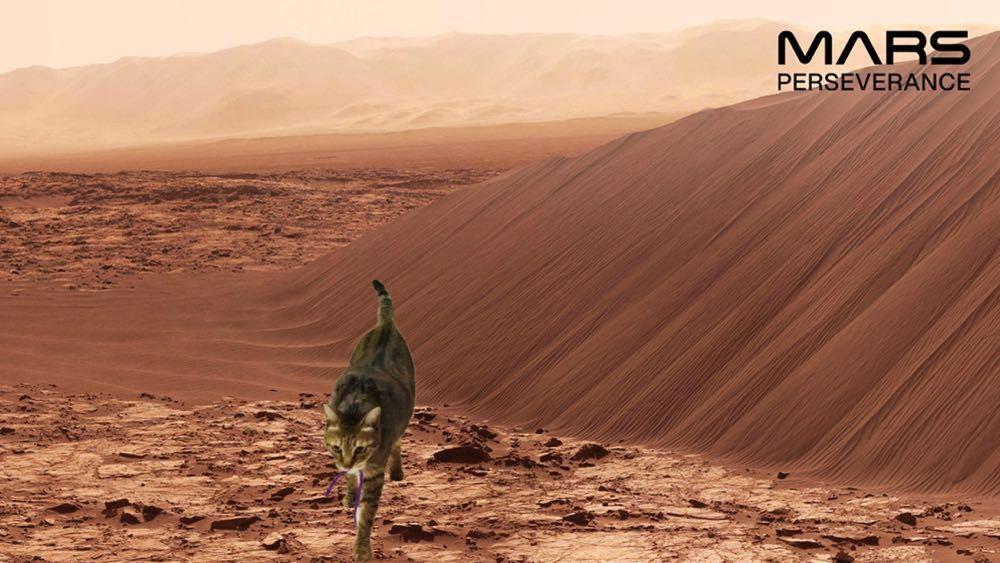 NASA 要把火星送到你身邊